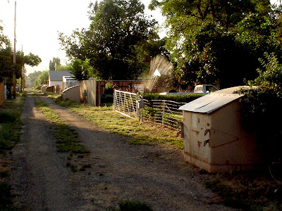 alley, garbage dumpster, Thermopolis, Wyoming