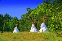 location tipi