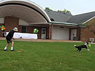 Frisbee Dog Green