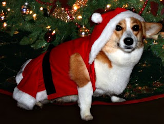 Christmas Honey