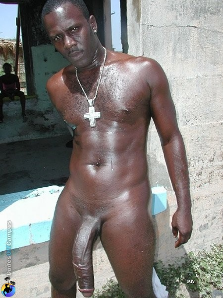 Jamaican Twink Cocks