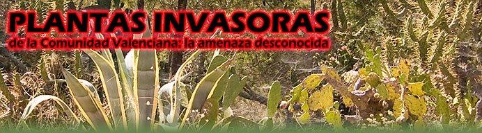 Plantas Invasoras de la Comunidad Valenciana