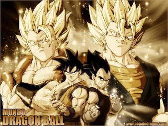 #18 Dragon Ball Wallpaper