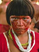 Os índios Suyá vivem na Parte setentrional do Parque Nacional do Xingu, . (indio )