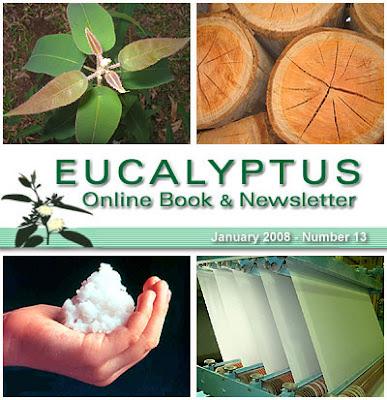 Eucalyptus Online Book and Newsletter, February 2008, by Celso Foelkel / Eucalyptus Wisdom from Brazil / Boletín Online Eucalipto, Febrero 2008, por Celso Foelkel / Sabiduría eucalíptica desde Brasil