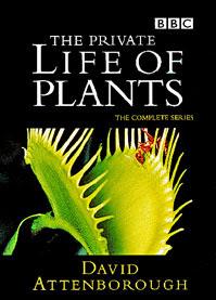 BBC The Private Life of Plants DVD / Sir David Attenborough