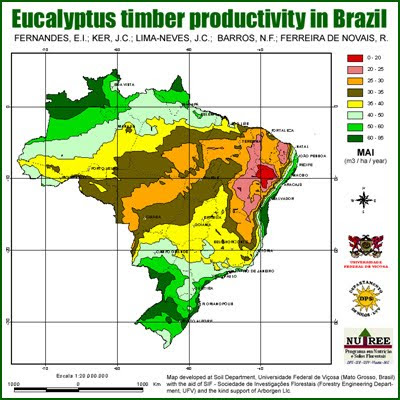Eucalyptus Timber Productivity in Brazil, courtesy of Universidade Federal de Viçosa and Arborgen / Mapa de Productividad Forestal del Eucalipto en Brasil, cortesia de la Universidad Federal de Viçosa y Arborgen / Gustavo Iglesias Trabado, Roberto Carballeira Tenreiro and Javier Folgueira Lozano / GIT Forestry Consulting SL, Consultoría y Servicios de Ingeniería Agroforestal, Lugo, Galicia, España, Spain / Eucalyptologics, information resources on Eucalyptus cultivation around the world / Eucalyptologics, recursos de informacion sobre el cultivo del eucalipto en el mundo