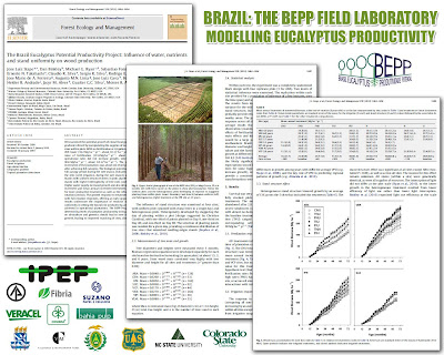 Jose Luiz Stape (North Carolina State University), Dan Binkley (Colorado State University), Mike Ryan (USDA) et al / BEPP - Brazil Eucalyptus Potential Productivity Project: Influence of water, nutrients and stand uniformity on wood production / BEPP - Proyecto de Modelizacion de la Productividad Potencial del Eucalipto: Influencia de la disponibilidad de agua, nutrientes y la homogeneidad del rodal en la produccion de madera / Gustavo Iglesias Trabado, Roberto Carballeira Tenreiro and Javier Folgueira Lozano / GIT Forestry Consulting SL, Consultoría y Servicios de Ingeniería Agroforestal, Lugo, Galicia, España, Spain / Eucalyptologics, information resources on Eucalyptus cultivation around the world / Eucalyptologics, recursos de informacion sobre el cultivo del eucalipto en el mundo