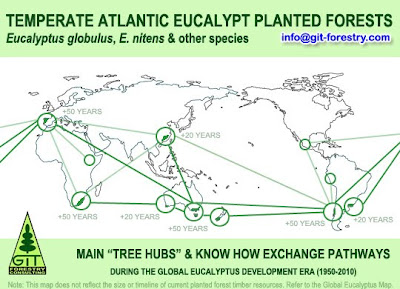 Temperate Atlantic Eucalyptus planted forests around the world: Eucalyptus globulus, Eucalyptus nitens and others - Global Know How and Tree Hub Map / Bosques cultivados templados atlanticos de eucalipto: Eucalyptus globulus, Eucalyptus nitens, y otros - Mapa Global de Centros de Actividad y Know How / Gustavo Iglesias Trabado & Roberto Carballeira Tenreiro & Javier Folgueira Lozano / GIT Forestry Consulting, Consultoría y Servicios de Ingeniería Agroforestal, Galicia, España, Spain / Eucalyptologics, information resources on Eucalyptus cultivation around the world / Eucalyptologics, recursos de informacion sobre el cultivo del eucalipto en el mundo