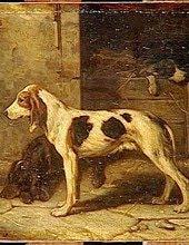 La Mort du chien - Octave Mirbeau - Livre audio gratuit