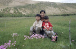 Families who are effected by the destruction of the grasslands.