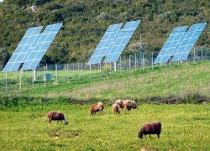 «Χρυσοθήρες» οι αγρότες στο πάρκο με τα φωτοβολταϊκά