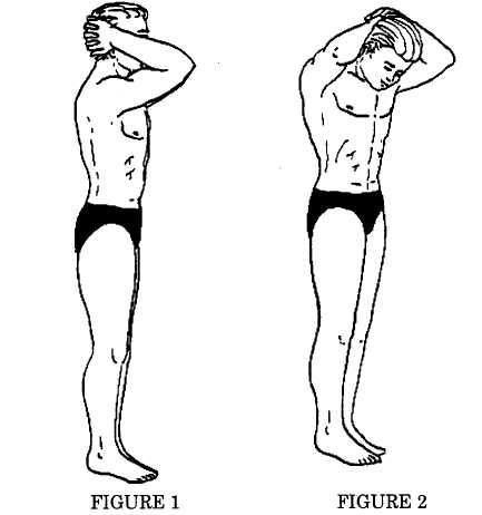 head stretching exercises