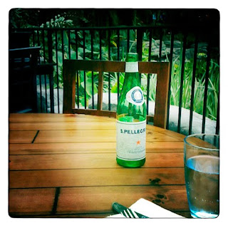 Pellegrino sparkling water hipstamatic iPhone photography app