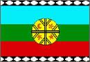 Bandera  de la nacion Mapuche
