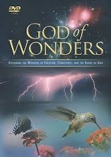 The God of Wonders