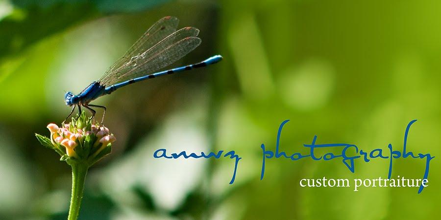 amwz photography