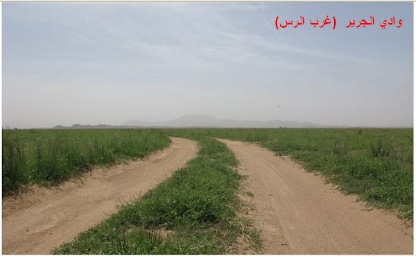 وادي الجرير ( غرب الرس)