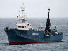 Harpoon Vessel - Yushin Maru