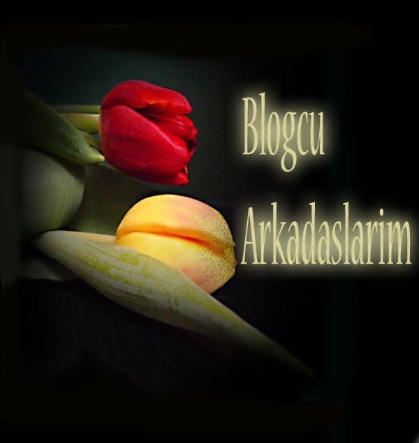 Blogcu Arkadaslarim