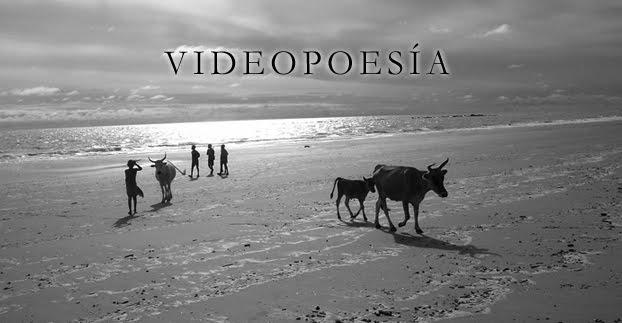 TORETEO - Videopoesía Nuria Gil