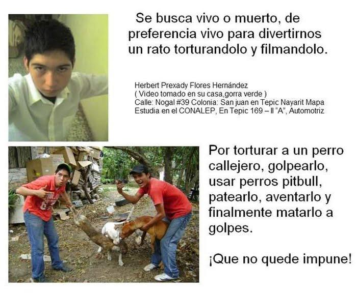 Tamaulipas sin control: grupo armado mata a mujeres y