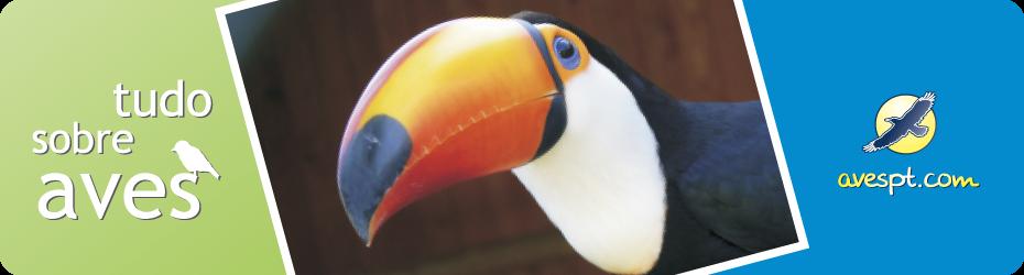 AVESPT.COM - Tudo Sobre Aves