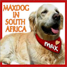 Max in South America