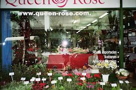 FLORES  QUEEN ROSE