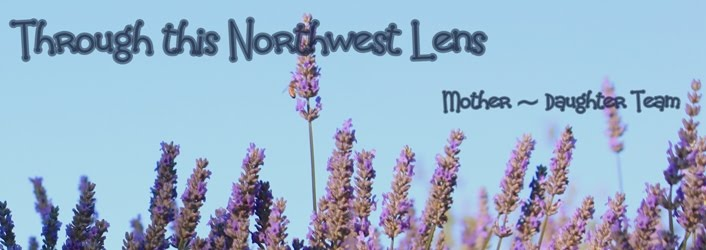 Through this Northwest Lens