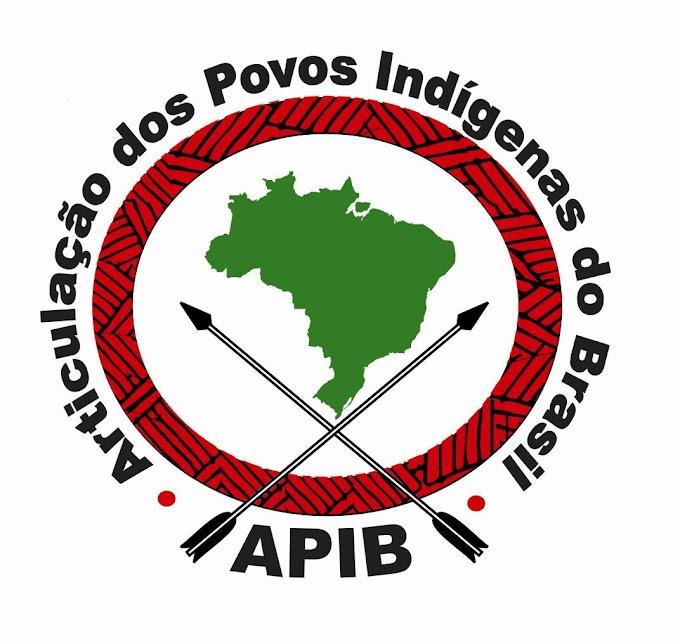 O movimento indígena no Brasil!