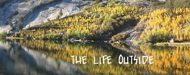 The Life Outside