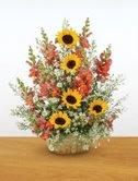 São para a Nina estas flores com o desejo de felicidades!