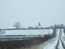Snowy Dry Doddington
