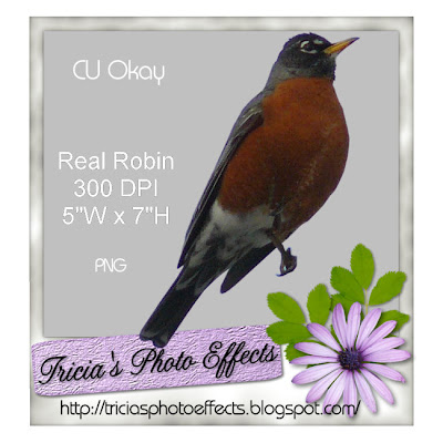 Real Robin (tricias photo effects) Preview+robin+freebie+store