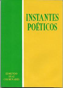 INSTANTES POÉTICOS - Libro de poesía.