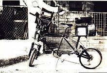 Rastreando el Reggae 2004