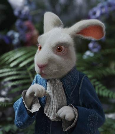 EL PAIS DE LAS MARAVILLAS:  Por el Conejo TMCTWISP