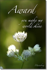 You Make My World Shine Award