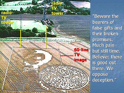 Alien Face Crop Circle http://www.psychedelicadventure.net/2008/09/arecibo-crabwood-alien-crop-circle.html