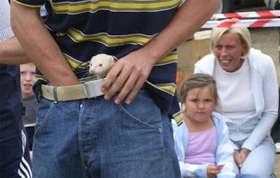 Wackiest | Bizarre Animals Sports