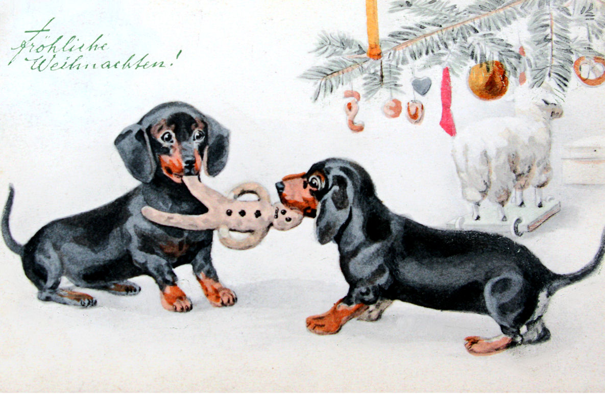 The Long and Short of it All: A Dachshund Dog News Magazine ...