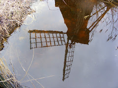 Wicken Fen windmill reflection