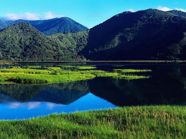 zealand landscape