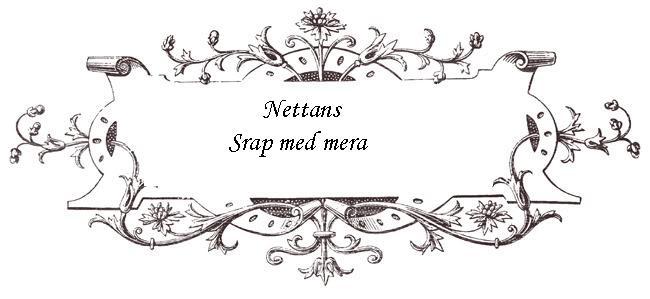 Nettans scrapsida mm