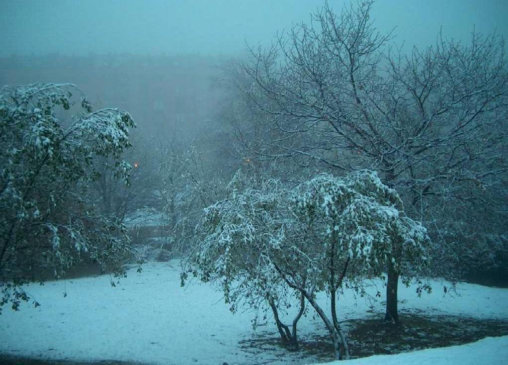[nieve2002042.jpg]