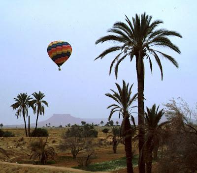Mongofieres Internacionales Tunicia.