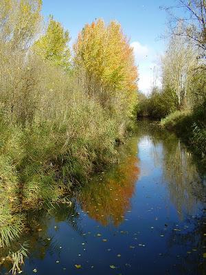 Canal de Castilla desde el