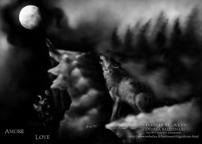 lupo amore luna