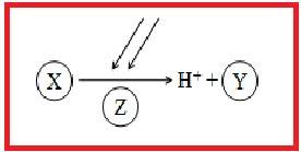 Secara berurutan x, y, dan z adalah .... .